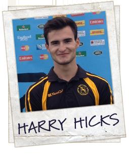 Harry Hicks
